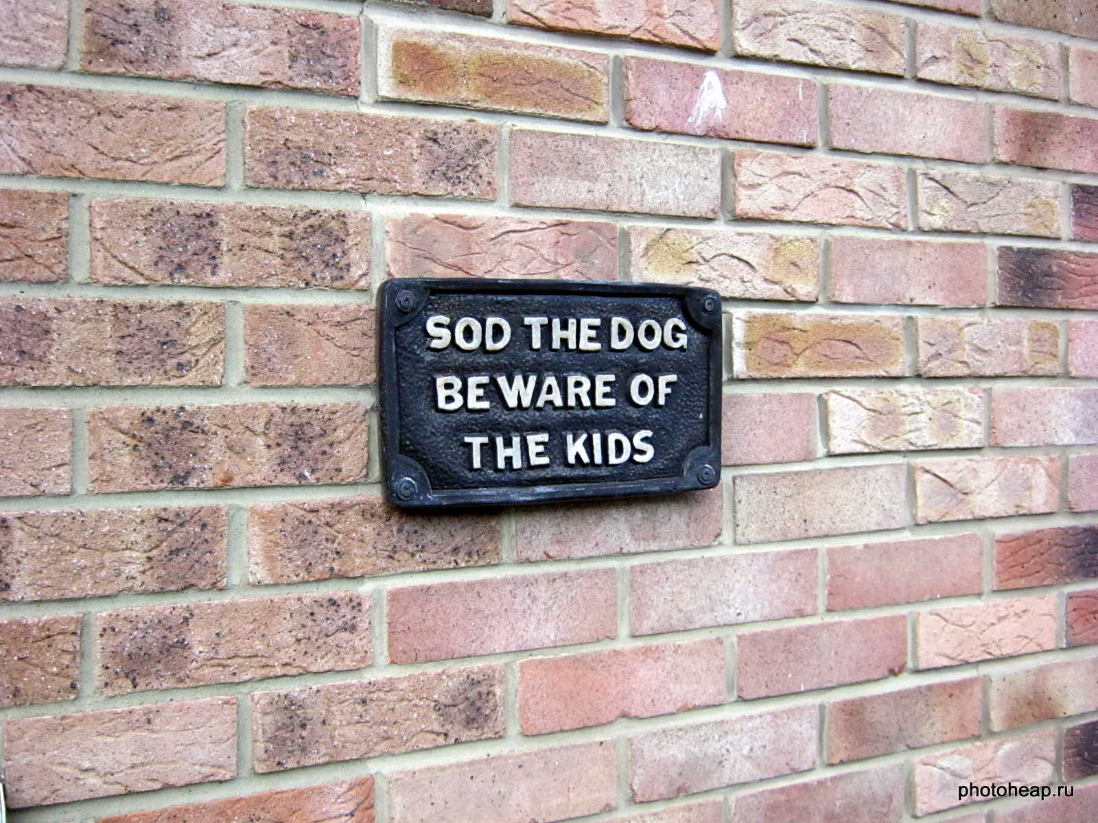 Sod the dog beware of the kids