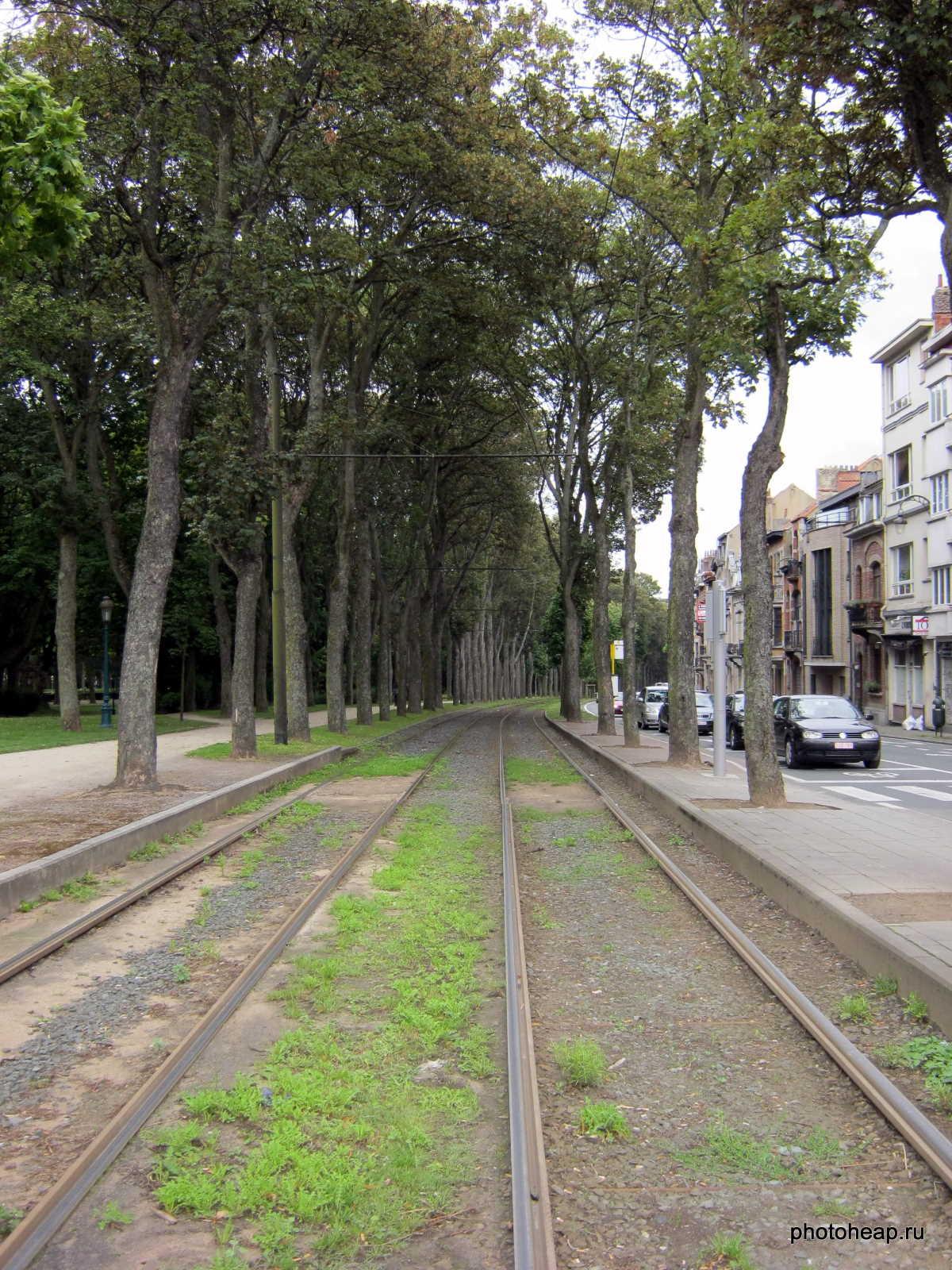 Brussels - Tram rails